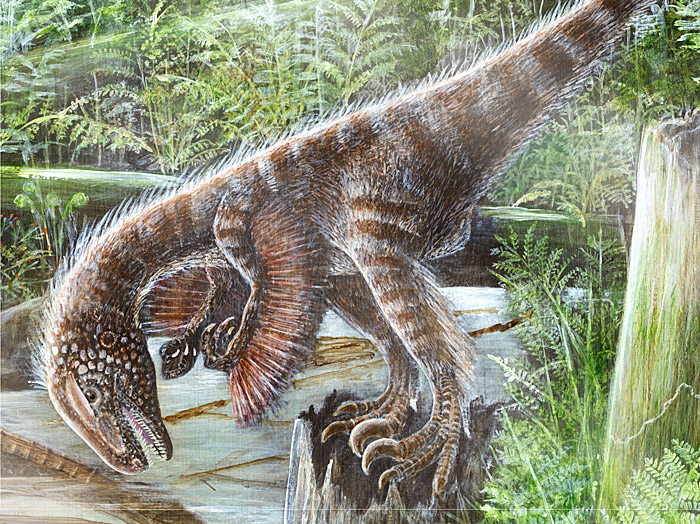 1.dromaeosaur-spotlight-large